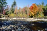 Fall River Scenes Prints - Swift River Print by Axiom Photographic