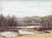 Landscape Drawings Posters - Swift River November Poster by Betsy Gray