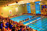 Catonsville Prints - Swim Meet Print by Stephen Younts