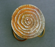 Bronze Jewelry Prints - Swirl Bronze Ring Print by Mirinda Kossoff