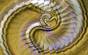 Swirling Prints - Swirling Print by Ron Bissett