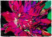 Swirly Fabric Flower Print by Judi Bagwell
