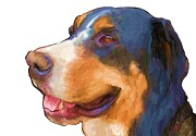 Pet Therapy Posters - Swiss Bernese Poster by Donna Johnson