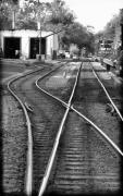 Trains Photos - Switch Track by Colleen Kammerer