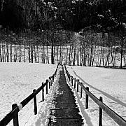Contrasty Acrylic Prints - Switzerland Pathway Acrylic Print by Troy Ziel