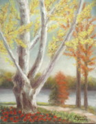 Autumn Leaves Pastels Framed Prints - Sycamore by the Savannah in Autumn Framed Print by Pamela Poole