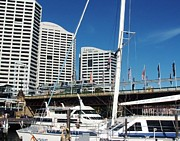 Boats Paintings - Sydney - The Harbour City by Therese Alcorn