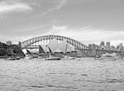 Sydney Opera House Art - Sydney Hardour in Black and White by Chris Smith