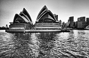 Opera House Framed Prints - Sydney Opera House-Black and White Framed Print by Douglas Barnard