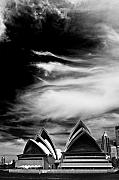 Sydney Opera House Art - Sydney Opera House portrait by Sheila Smart