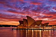 Sydney Operahouse Print by Preston Coe
