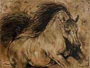 Paula Collewijn -  The Art of Horses - Symphony
