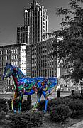 Selective Color Framed Prints - Syracuse Horse Framed Print by Don Nieman