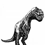 T Rex Drawings - T-Rex Dinosaur by Karl Addison