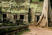 Khmer Prints - Ta Prohm Temple in Cambodia Print by Artur Bogacki