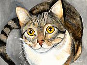 Gray Cat Paintings - Tabby Cat by Elaine Hodges