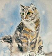 Frances Gillotti - Tabby Cat