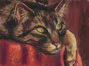 Cat Portraits Pastels Prints - Tabby Nap Print by Billie Colson