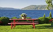 Flower Basket Posters - Table by the Lake Poster by Idaho Scenic Images Linda Lantzy