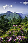 Mountain Photographs Prints - Table Rock Print by Rob Travis