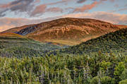 Scott Leslie - Tablelands Mountain and...