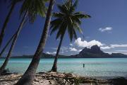 Wade Framed Prints - Tahiti View Framed Print by David Cornwell/First Light Pictures, Inc - Printscapes
