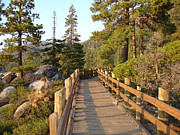 Silvie Kendall Metal Prints - Tahoe Bridge Metal Print by Silvie Kendall