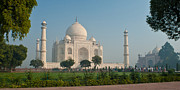 India Metal Prints - Taj Garden Metal Print by Mike Reid