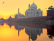 Yamuna River Posters - Taj Mahal From Other Side Poster by Sami