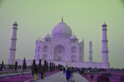 Mahal Digital Art Posters - Taj Mahal Poster by Vijay Sharon Govender