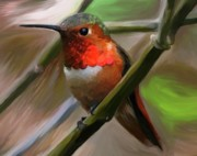 Hummingbird Painting Prints - Take a Seat Print by Patti Siehien