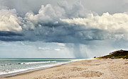 Melbourne Beach Prints - Take Cover Print by Cheryl Davis