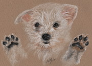 Cute Dogs Drawings Framed Prints - Take Me Home Framed Print by Kathleen Kelly Thompson