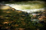 Rushing Water Prints - Take Me to the River Print by Karen Wiles