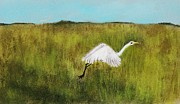 Grass Pastels - Takeoff by Anastasiya Malakhova