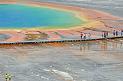 Yellowstone Park Prints - Taking a Stroll at Yellowstones Grand Prismatic Print by Bruce Gourley