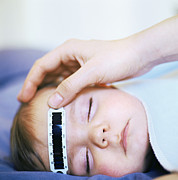 High Forehead Posters - Taking Babys Temperature Poster by Cristina Pedrazzini