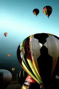 Hot Air Balloons Digital Art - Taking Off by David Patterson