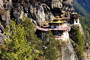 Buddhism Framed Prints - Taktsang Monastery  Framed Print by Fabrizio Troiani