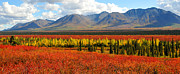 Colors Of Autumn Prints - Talkeetna Mountains Moment Print by Alan Lenk