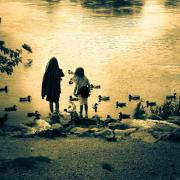 Black And White Photos - Talking to ducks by Bob Orsillo