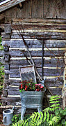 Log Cabin Prints - Tall Log Cabin and Garden Tools Print by Linda Phelps