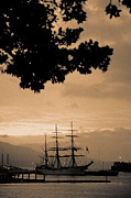 Gaspar Avila Framed Prints - Tall ship Gorch Fock Framed Print by Gaspar Avila