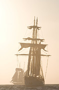 Mast Adventure Prints - Tall ships Festival Print by Cliff Wassmann