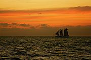 Bonnes Eyes Fine Art Photography Prints - Tall Ships Sunset Print by Bonnes Eyes Fine Art Photography