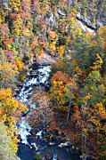 Susan Leggett Prints - Tallulah River Gorge Print by Susan Leggett