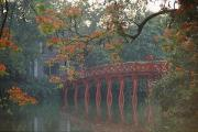 Religious Art Photos - Tamarind Blossoms Blooming On The Banks by Steve Raymer