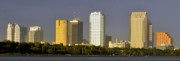 Tampa Bay Florida Posters - Tampa and Bayshore Poster by David Lee Thompson