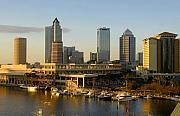 Tampa Skyline Prints - Tampa Bay and Gasparilla Print by David Lee Thompson
