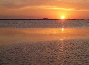 Port Kent Photos - Tampa Bay Golden Sunset by Gail Kent